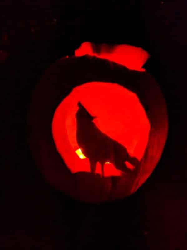 Kürbiss Halloween Wolf