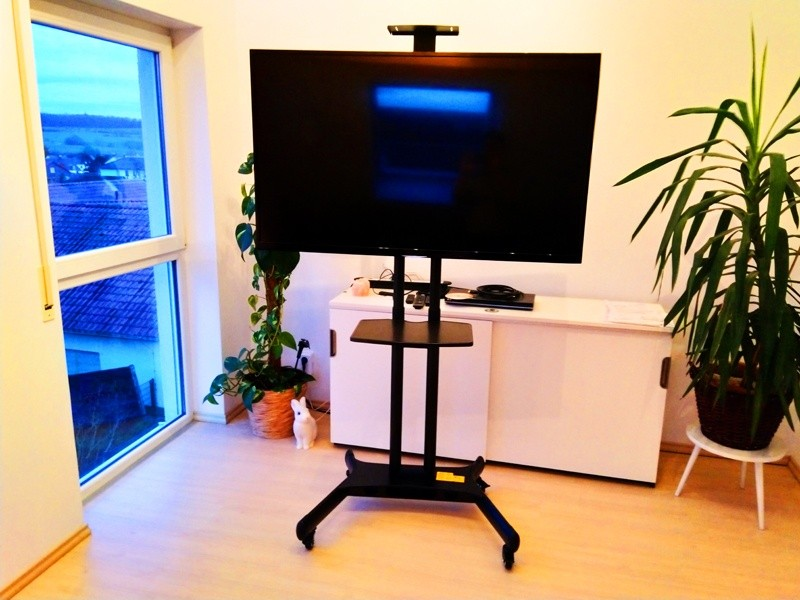 ScreenStation Mobiler TV Ständer