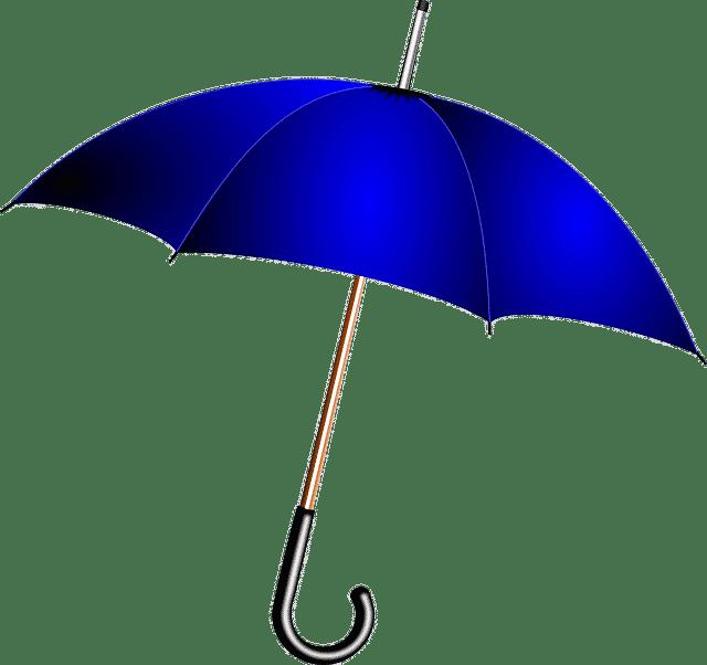 Giibt es eine Regenversicherung