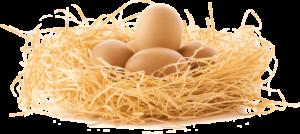 Eierlaufen Parcour